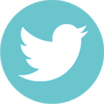 Twitter Badge small